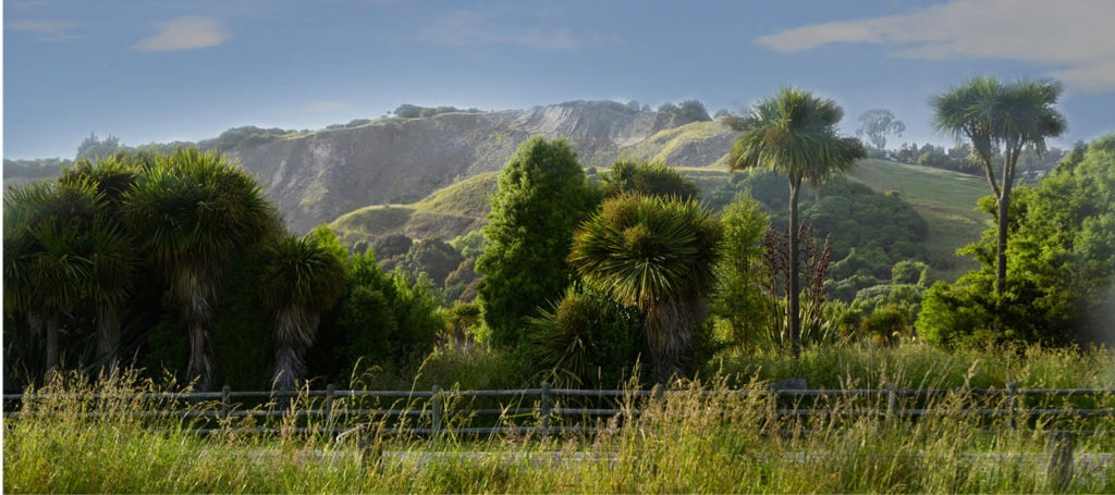 yoursection quarry gates kennedys bush christchurch